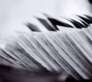 TIPURI DE ENTITATI Firma de Contabilitate in Bucuresti - Servicii de Contabilitate pentru Firme